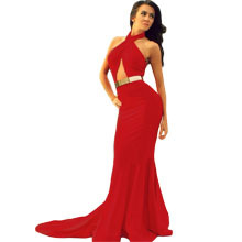 2014 Prom Dresses with Fringe Cocktail Party Dress