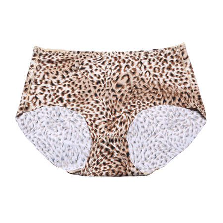 Hot Sexy Seamless Panty Girl Leopard Print Women Lady Seamless Underwear